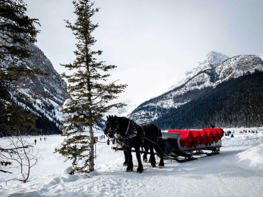horse drawn sleigh rides, Banff Canada, family Christmas destinations