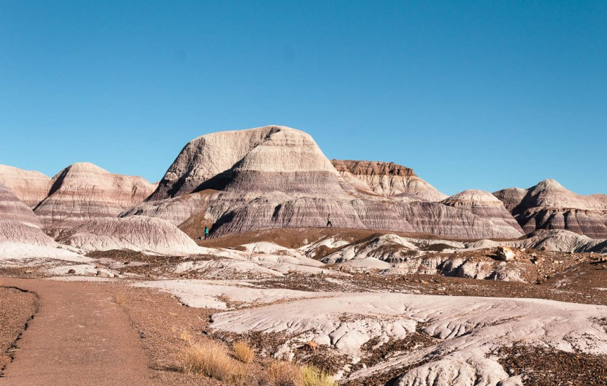 the petrified forest, family friendly journey along route 66