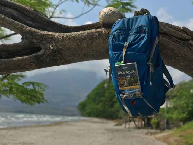 Backpack and book hanging from a tree