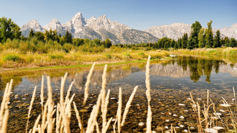 Grand Teton, Yellowstone & Glacier National Park Road Trip