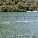 Longest Trail of Ducks in Naini Lake