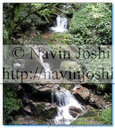 Water fall in Rains, On the way to Pangot (Nainital)