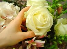 Какие цветы выбрать в зависимости от случая?