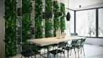 Автентичне вертикальне озеленення в квартирі