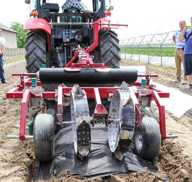 Применение агроволокна на плантации клубники