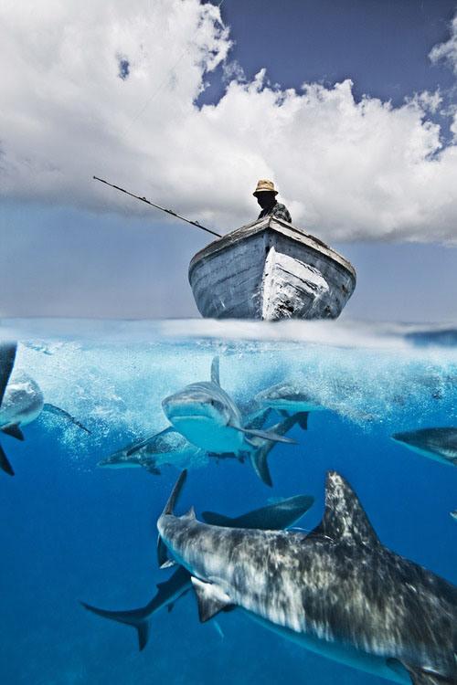 257-fishing-7