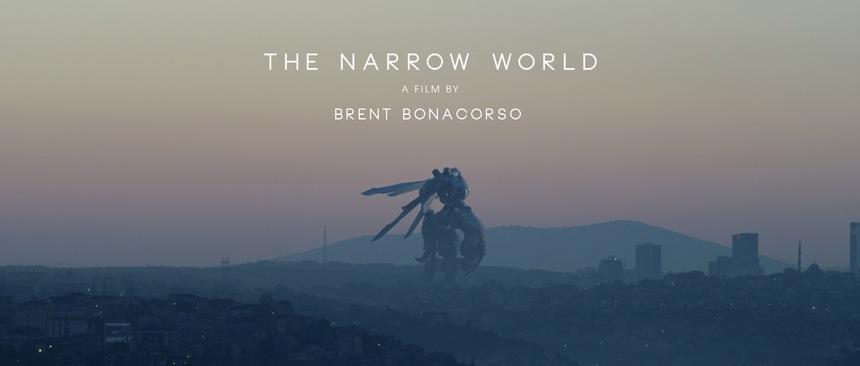 The Narrow World