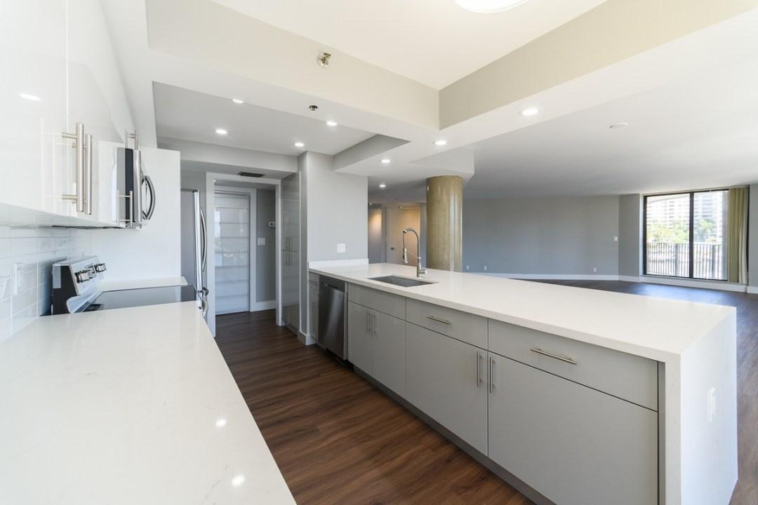 Kitchen Remodel Hallandale Peninsula