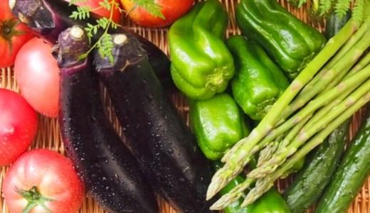 暑さ対策を食べ物で!夏におすすめの陰性食品はコチラ!