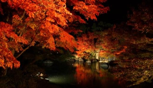 紅葉!京都のライトアップのおすすめは?この8選!
