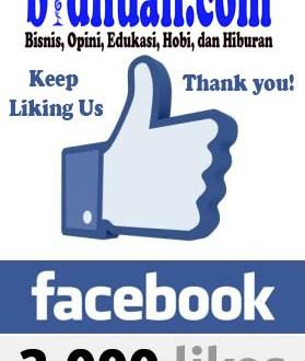 facebook like 3000 copy