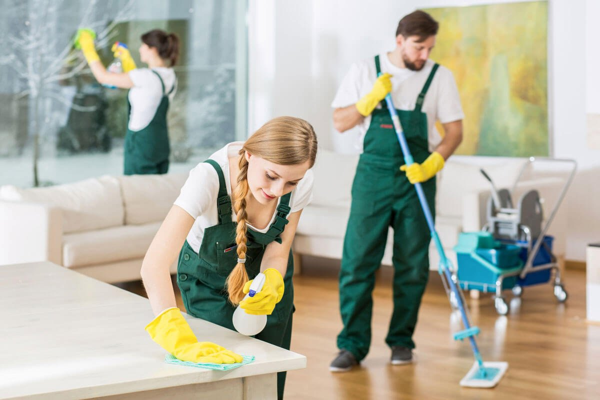 Team of Cleaning Workers Work on Cleaning Living Room