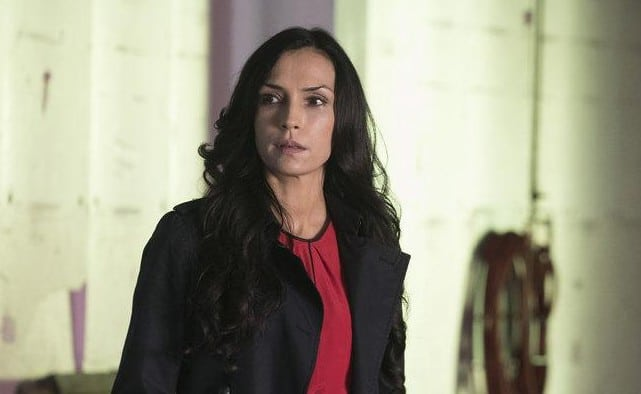 Susan Hargrave in The Blacklist
