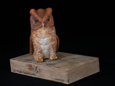 Screech Owl on Cigar Box