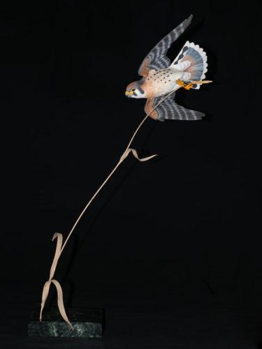 Flying Kestrel