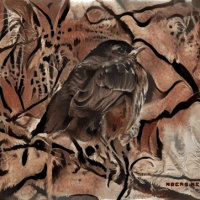 Birds in deep dream 2