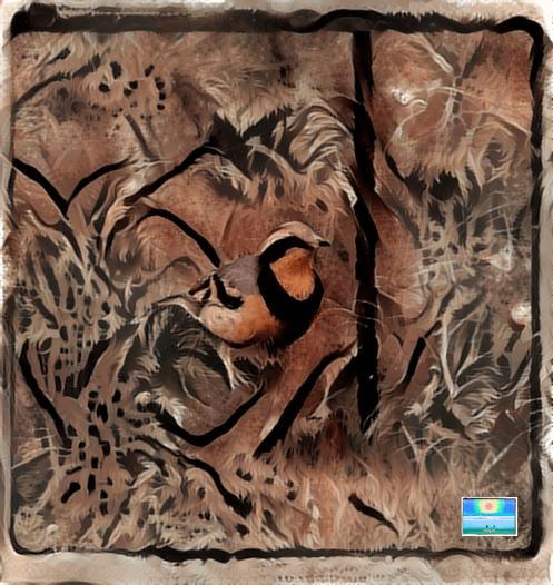 Birds in Deep Dream 3