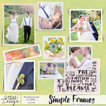 nbk_PL2015_06_frames