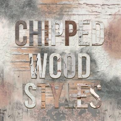 nbk-DEAR-DIARY-PT-styles-chippedwood-det