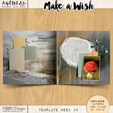 nbk-make-a-wish-TP45
