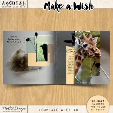 nbk-make-a-wish-TP46