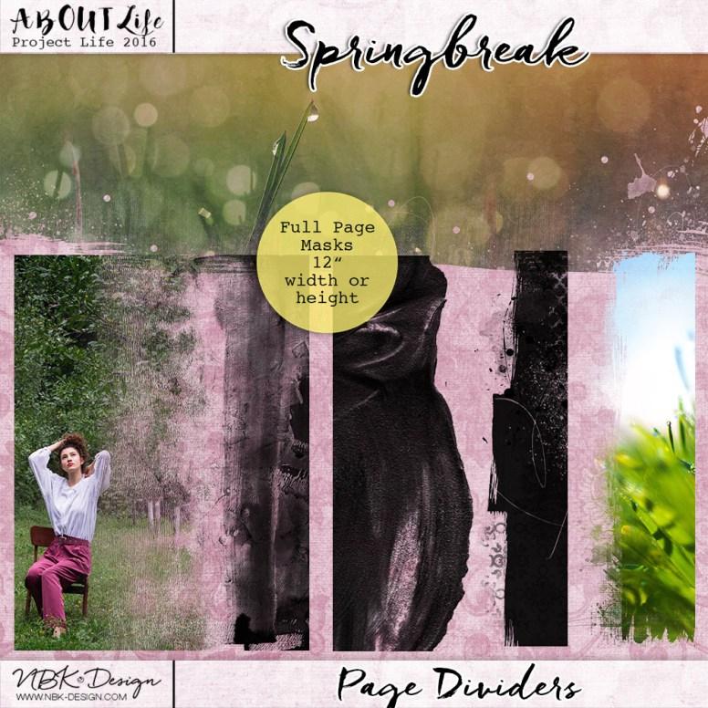 nbk-springbreak-pagedivieders