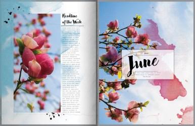 nbk-wildflowers-mini-storybook-10-11-800