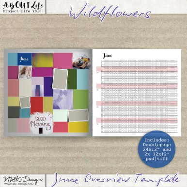 nbk_Wildflowers-TP-JuneOverview