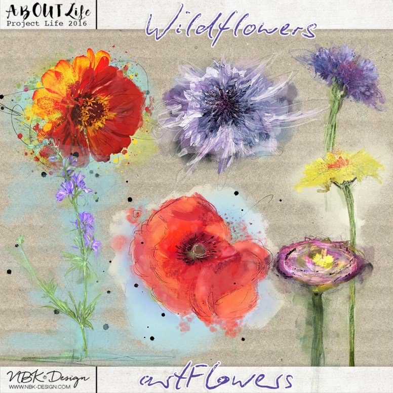 nbk_Wildflowers-artflowers