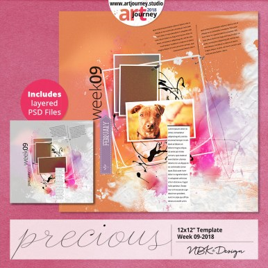 nbk-PRECIOUS-TP-09