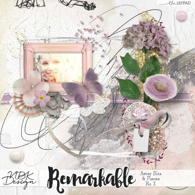 nbk-Remarkable-ABP-No2TLP