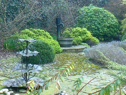 A not so private garden near an old cottage- the Pump house