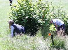 School- hiding places in the grass