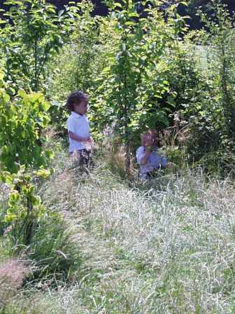 School- in among the 'jungle'