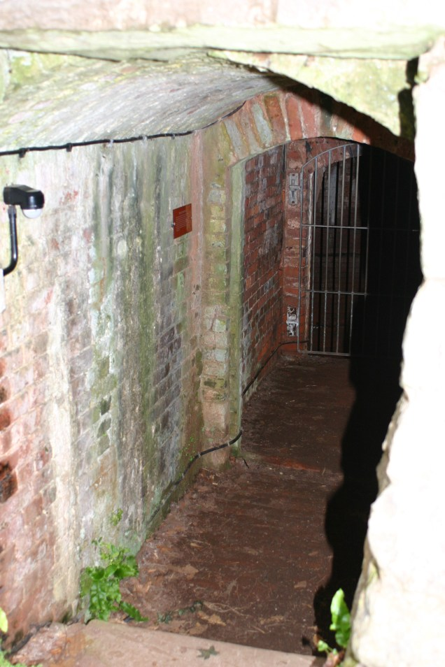 Into the Ice House...