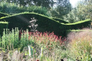 Hedges can be used to divide up a space and perhaps be a point of interest themselves..