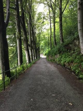 Hiking down the mountain