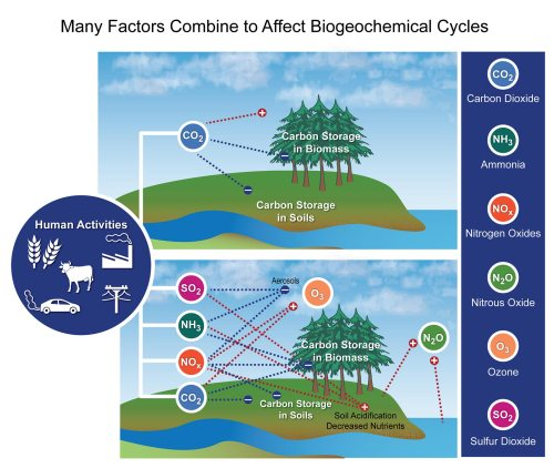 small resolution of figure 15 4 many factors combine to affect biogeochemical cycles