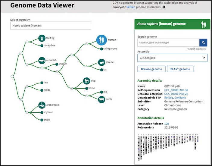 New Genome Data Viewer access page