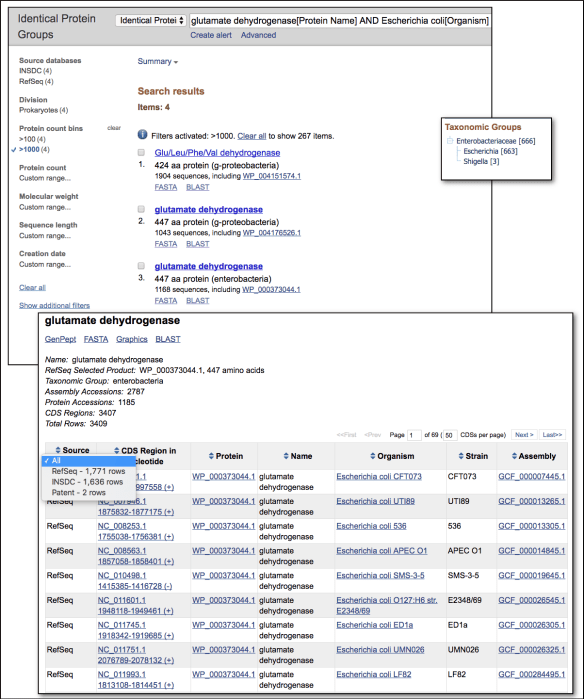 Screenshot of Identical Protein Groups resource