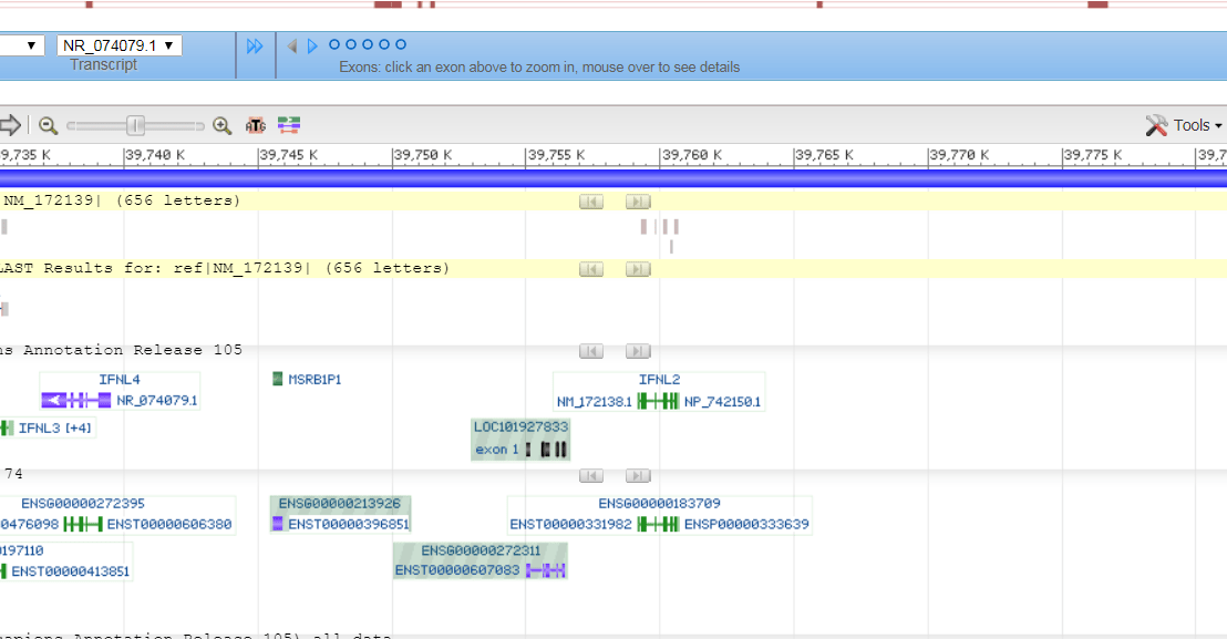 The new BLAST widget seamlessly integrates your results into NCBI's Genome Data Viewer (GDV)