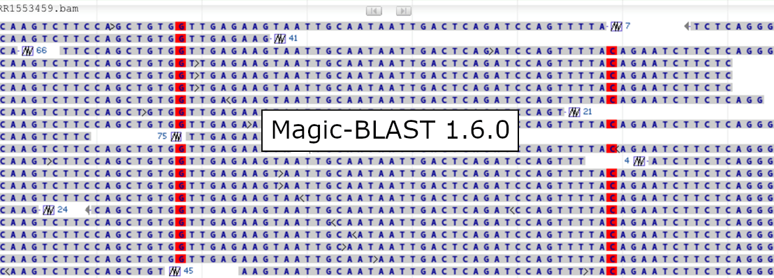 Magic-BLAST version 1.6.0 is here!