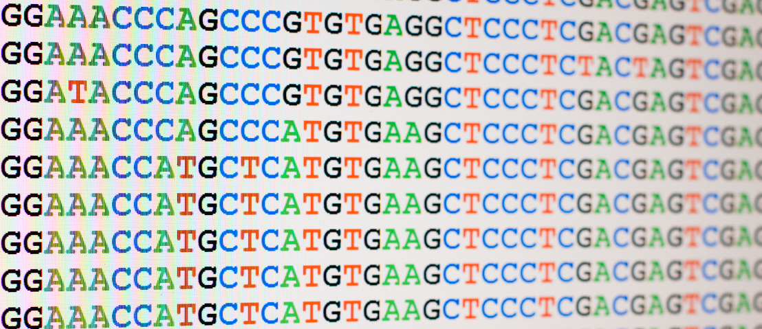 A new service to evaluate the quality of your assembled genome!