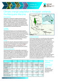 Climate Change Adaptation in Floodplain Wetlands: the Macquarie Marshes, 2pp, factsheet.
