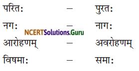 NCERT Solutions for Class 8 Sanskrit Chapter 4 सदैव पुरतो निधेहि चरणम् Q4.2