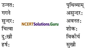 NCERT Solutions for Class 6 Sanskrit Chapter 13 विमानयानं रचयाम 1