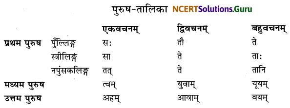 Class 6 Sanskrit Grammar Book Solutions पुरुषबोधनम् 1