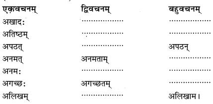 Class 6 Sanskrit Grammar Book Solutions लकाररूपाणि 12