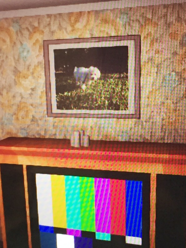 A close-up image of a portrait of Dan Dan (Osking's actual, recently deceased, dog) found in the living room setting you can go through in the game.