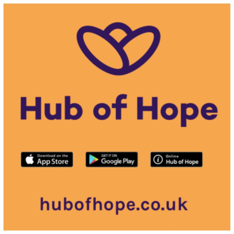 hub of hope logo for intranet.jpg